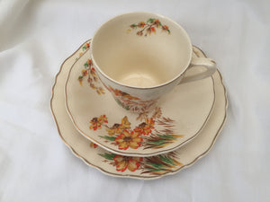 J & G Meakin Sunshine Floral Sunrise Pattern 3 Piece Demitasse Set Ivory, Brown, Orange and Gold Colour