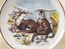 "Load image into Gallery viewer, Wildlife of Britain Decorative Plate ""Otters"" Designed by Susan Beresford"