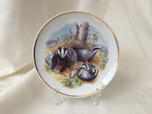 "Load image into Gallery viewer, Wildlife of Britain Decorative Plate ""Badgers"" Designed by Susan Beresford"