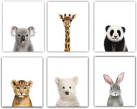 Designs by Maria Inc. Baby Nursery Decor Pictures (8x10) | Set of 6 (Unframed) Cute Animal Photography Wall Prints for Baby Boys & Girls Room