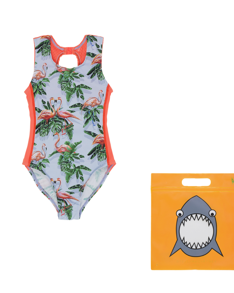 Painty Flamingo One Piece Swimsuit