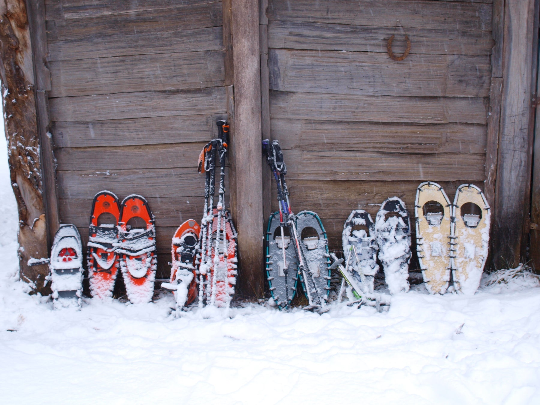 What Type Of Snowshoe Is Right For Me?