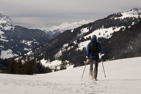 Ski poles used for snowshoeing for beginners