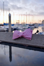Load image into Gallery viewer, Pink and Navy Blue Cape Cod and the Islands Bow tie- 100% Silk