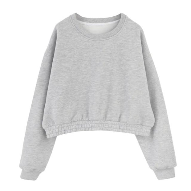 Basics Classic Crop Sweatshirt shop high quality cheap leggings