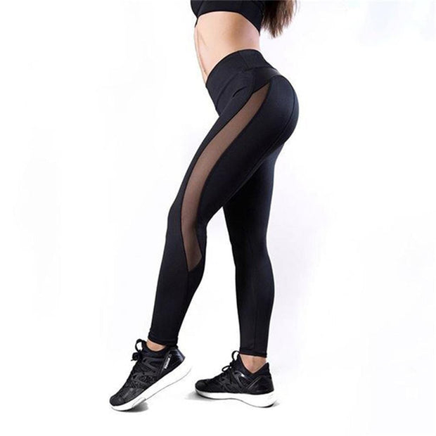 Champion Mesh Leggings - Moderne Women - FITNESS WEAR Best Deals Cheap High Quality Leggings Tops Fitness Gymwear Makeup Cosmetics At Home Workout Gear Paint By Numbers