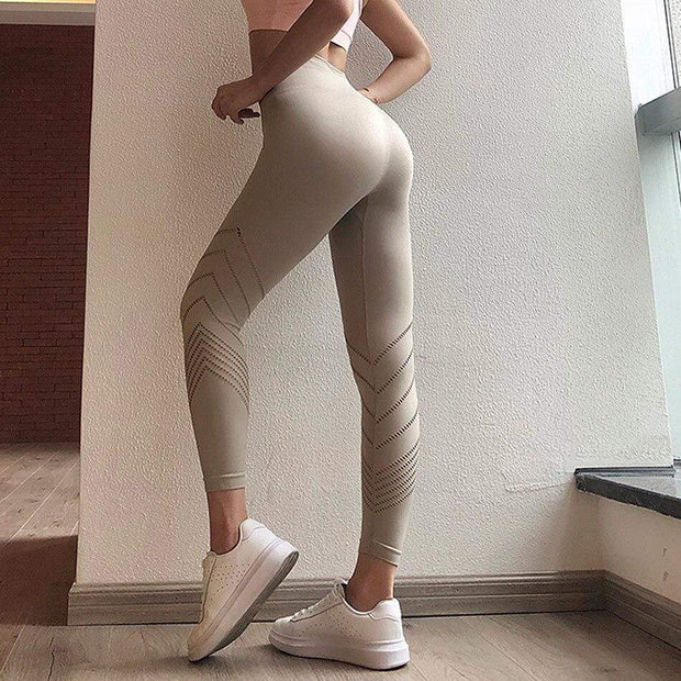 Energy Seamless Mesh Leggings - Moderne Women - FITNESS WEAR Best Deals Cheap High Quality Leggings Tops Fitness Gymwear Makeup Cosmetics At Home Workout Gear Paint By Numbers