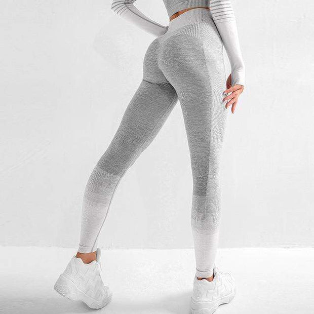 Ombre Lines Seamless Leggings - Moderne Women - FITNESS WEAR Best Deals Cheap High Quality Leggings Tops Fitness Gymwear Makeup Cosmetics At Home Workout Gear Paint By Numbers