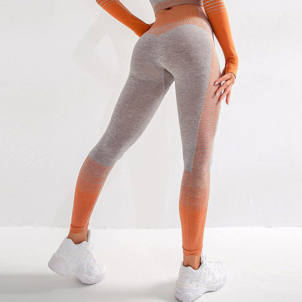 FITNESS WEAR Orange / XS Ombre Lines Seamless Leggings shop high quality cheap leggings
