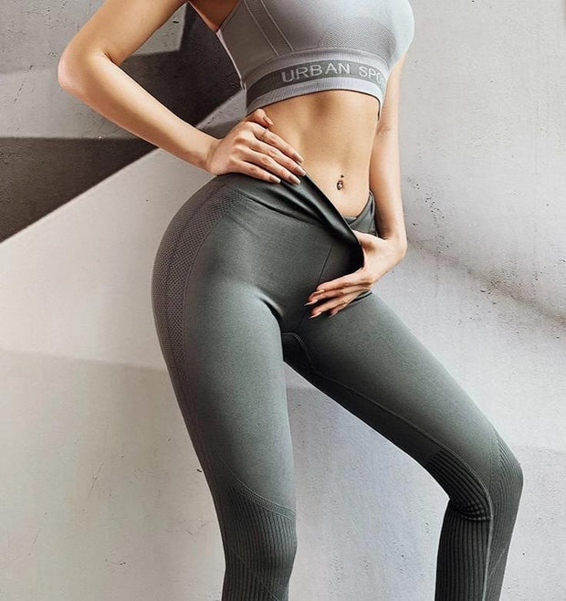 Seamless Warm Fitness Leggings - Moderne Women - FITNESS WEAR Best Deals Cheap High Quality Leggings Tops Fitness Gymwear Makeup Cosmetics At Home Workout Gear Paint By Numbers