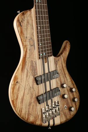 Cort A5 Plus Single Cut Multi Scale with Case