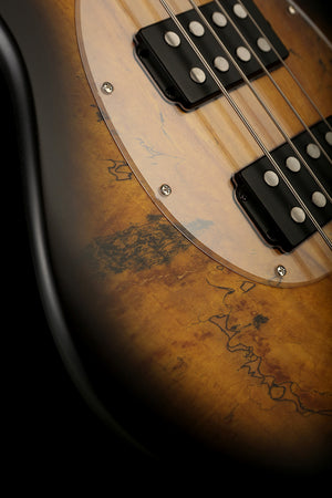 Sterling by Musicman Ray34 HH Spalted Top