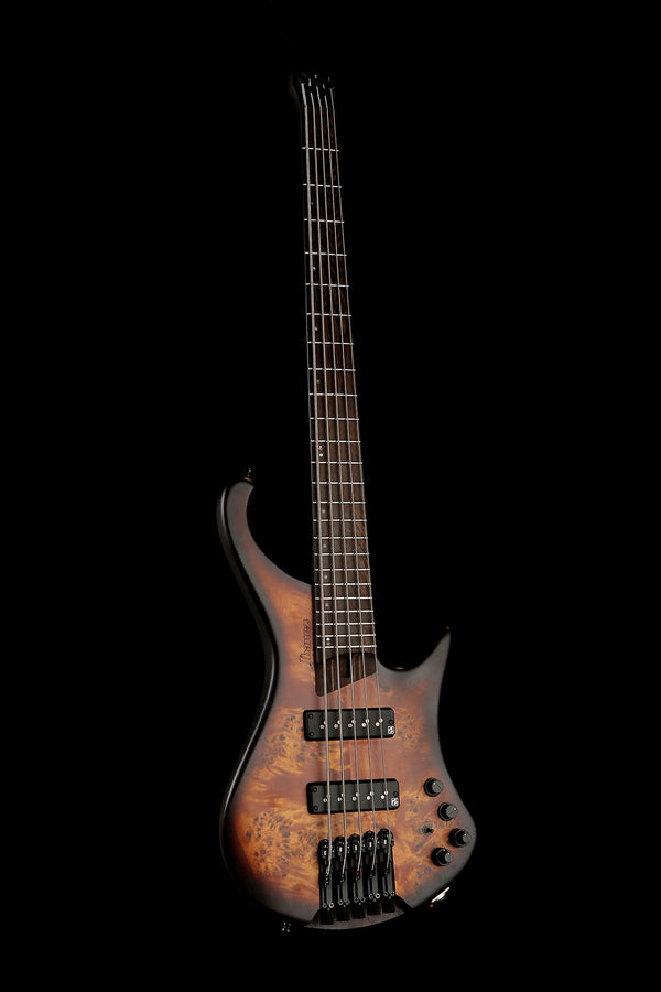 Ibanez EHB1505 Dragon Eye