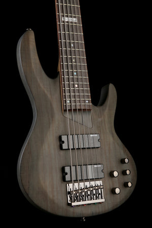 LTD B-206 Spalted Maple Bass