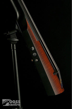 Bass Guitars - NS NXT 4