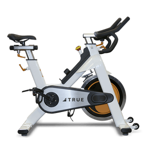 TRUE Fitness Spin Bike