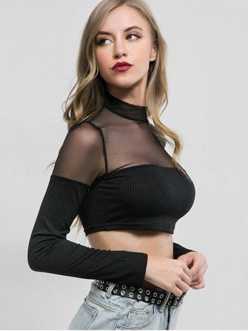 Mesh Panel Long Sleeves Crop Tee