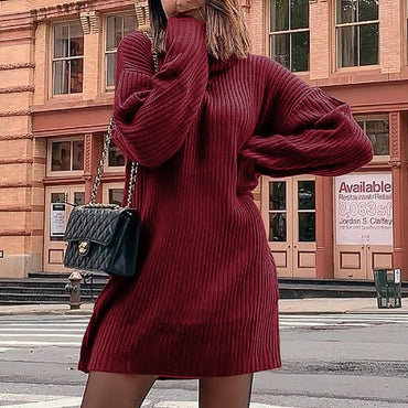 Casual Rib Knitted Sweater Dress