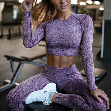 Set Gym Clothing Cropped Shirts+Fitness Leggings