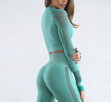 Mesh Workout Clothes  Gym Leggings