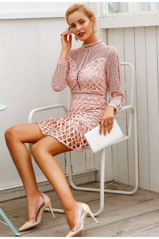 Elegant hollow out mesh lace sexy mini dress