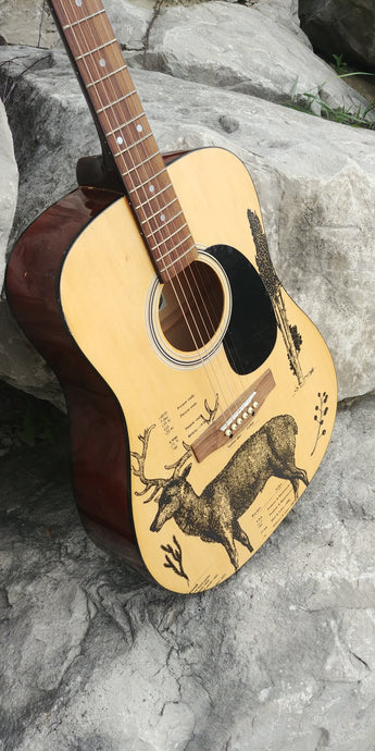 Country Guitar Makeover