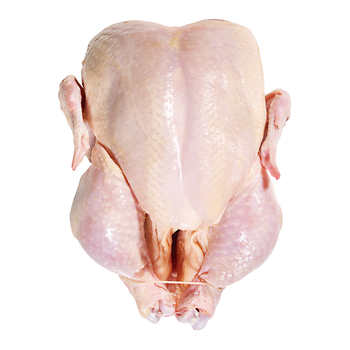 Fresh Whole Roasting Chickens (Avg. 2.5-3kg)