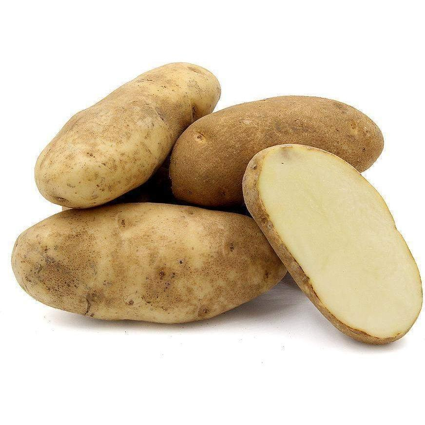 Organic Russet Potatoes (5lb bag)