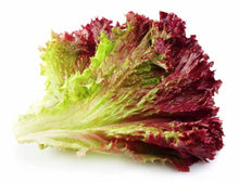 Load image into Gallery viewer, Leaf Lettuce - Green or Red