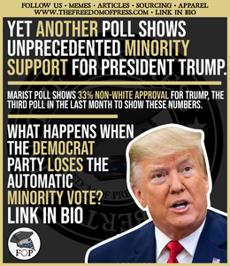 YET ANOTHER POLL SHOWS UNPRECEDENTED MINORITY SUPPORT FOR PRESIDENT TRUMP (#99)