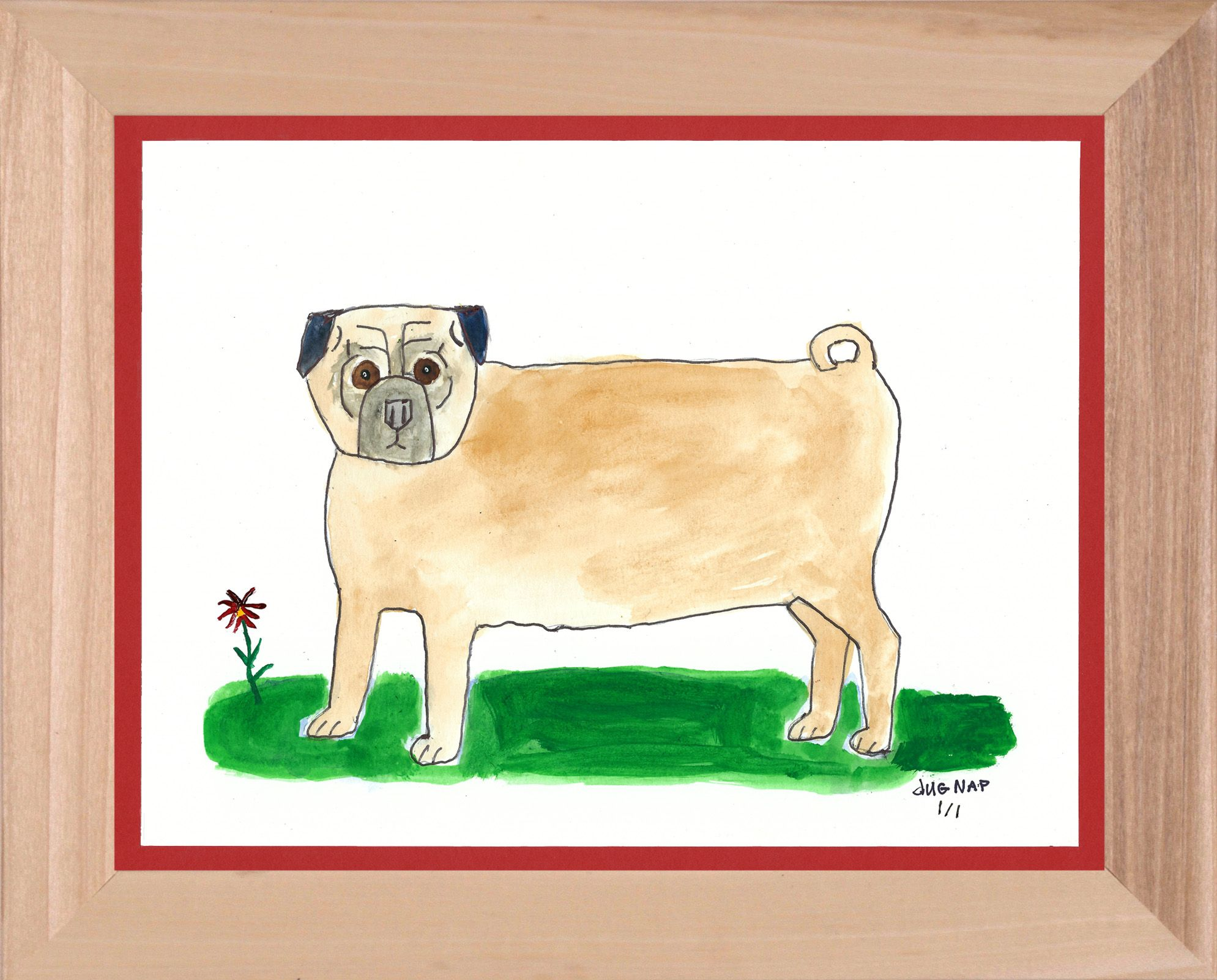 Pug with Flower  - 8.5x11 Watercolor and Pen on Paper - dug Nap Art
