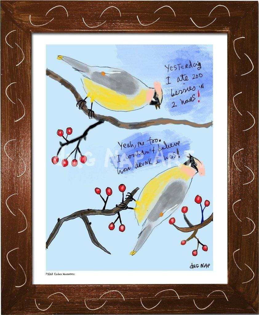 P1063 - Cedar Waxwings Framed Print / Small (8.5 X 11) Brown Art