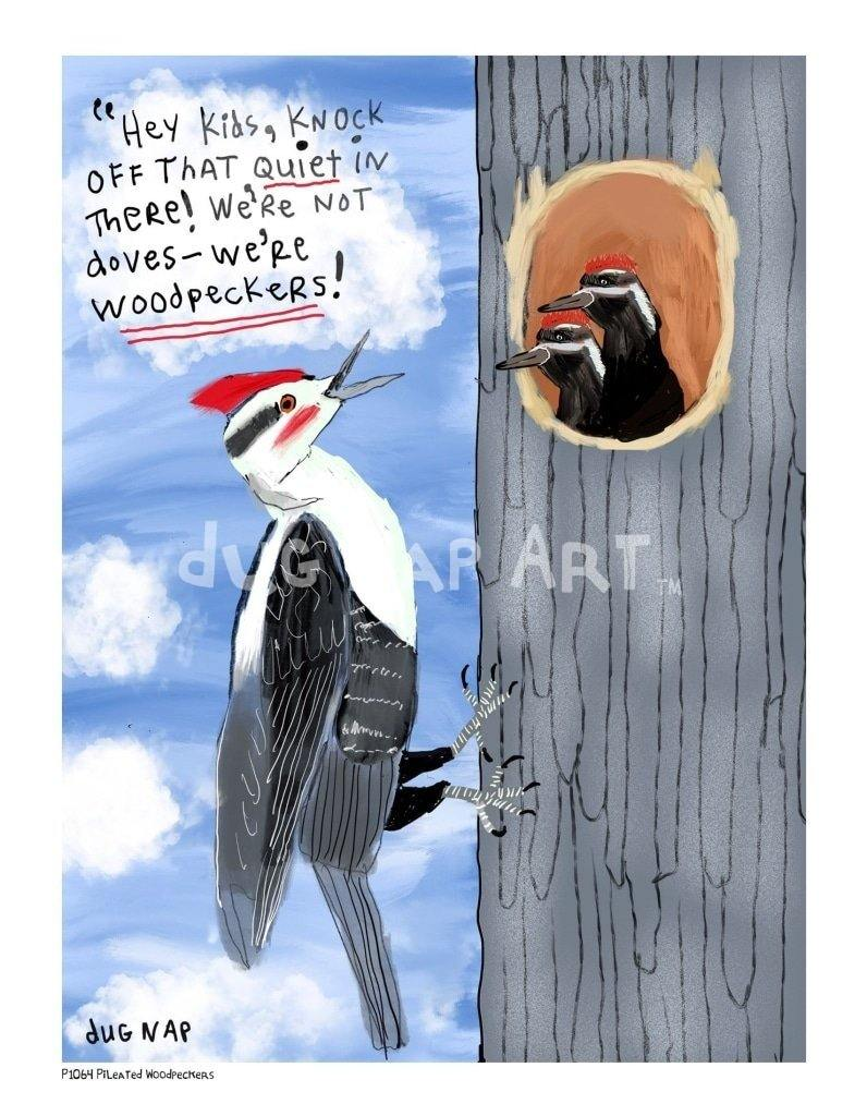 P1064 - Pileated Woodpeckers Unframed Print / Big (16 X 20) No Frame Art