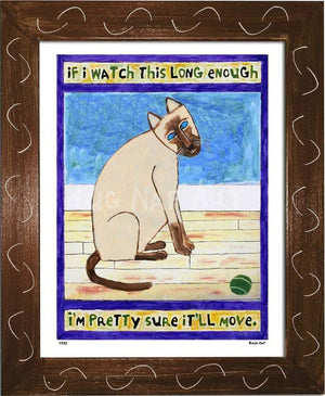 P773 - Cat Watching Ball (Siamese) - dug Nap Art