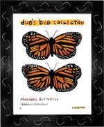 P847 - Monarch Framed Print / Small (8.5 X 11) Black Art