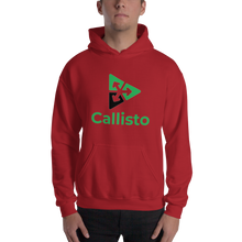 Load image into Gallery viewer, Callisto Unisex Hoodie