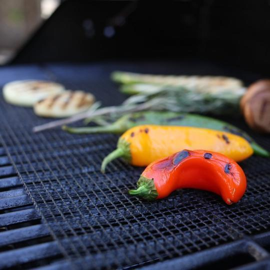 Limited Time Sale-MINTIML GRILL MAT.