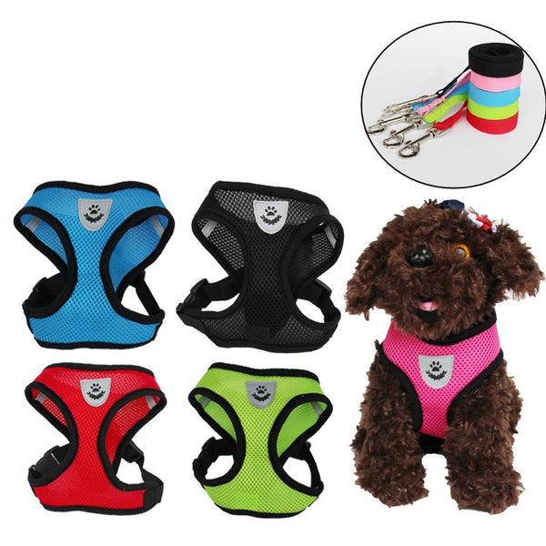 Cat Dog Adjustable Harness Vest Walking Lead Leash
