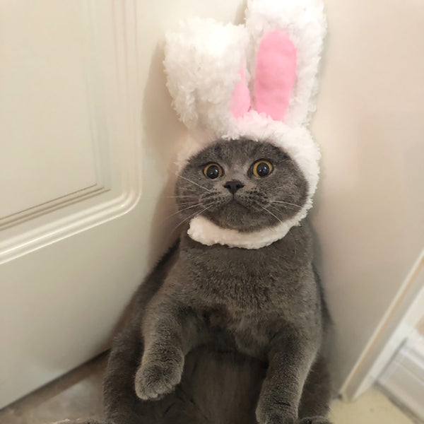 Pet Cat Cap Costume Warm Rabbit Hat