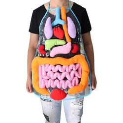 Kids Anatomy Apron for Home Preschool Teaching Aid