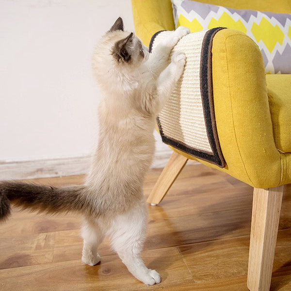 Sofa Protector Cat Scratch Board Cat Scratch Toy