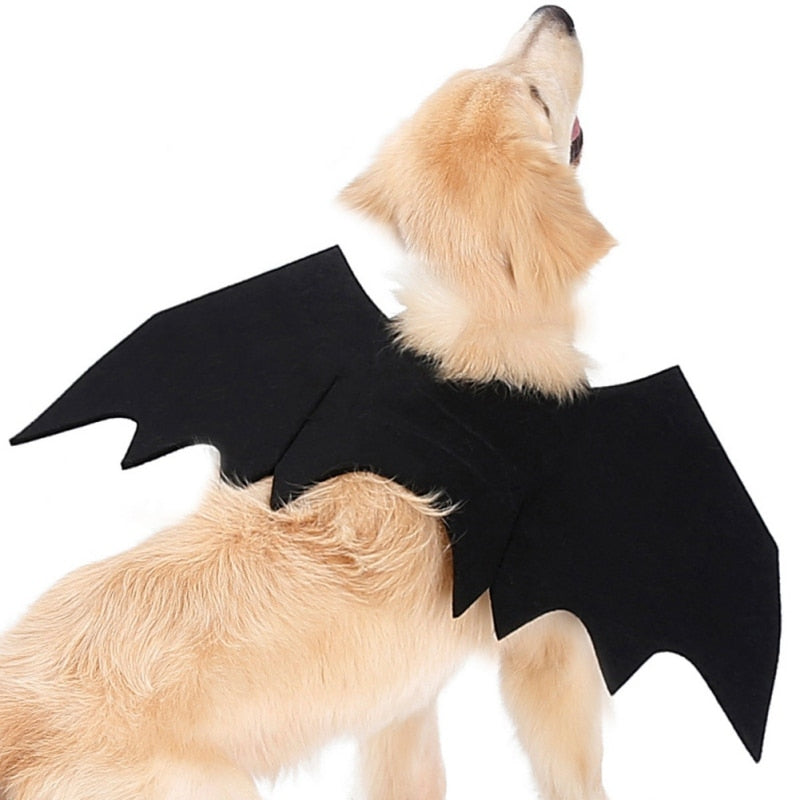 Pet Cat Dogs Halloween Kittens Black Bat Wings CosplayCostume for Dog Cats Puppies