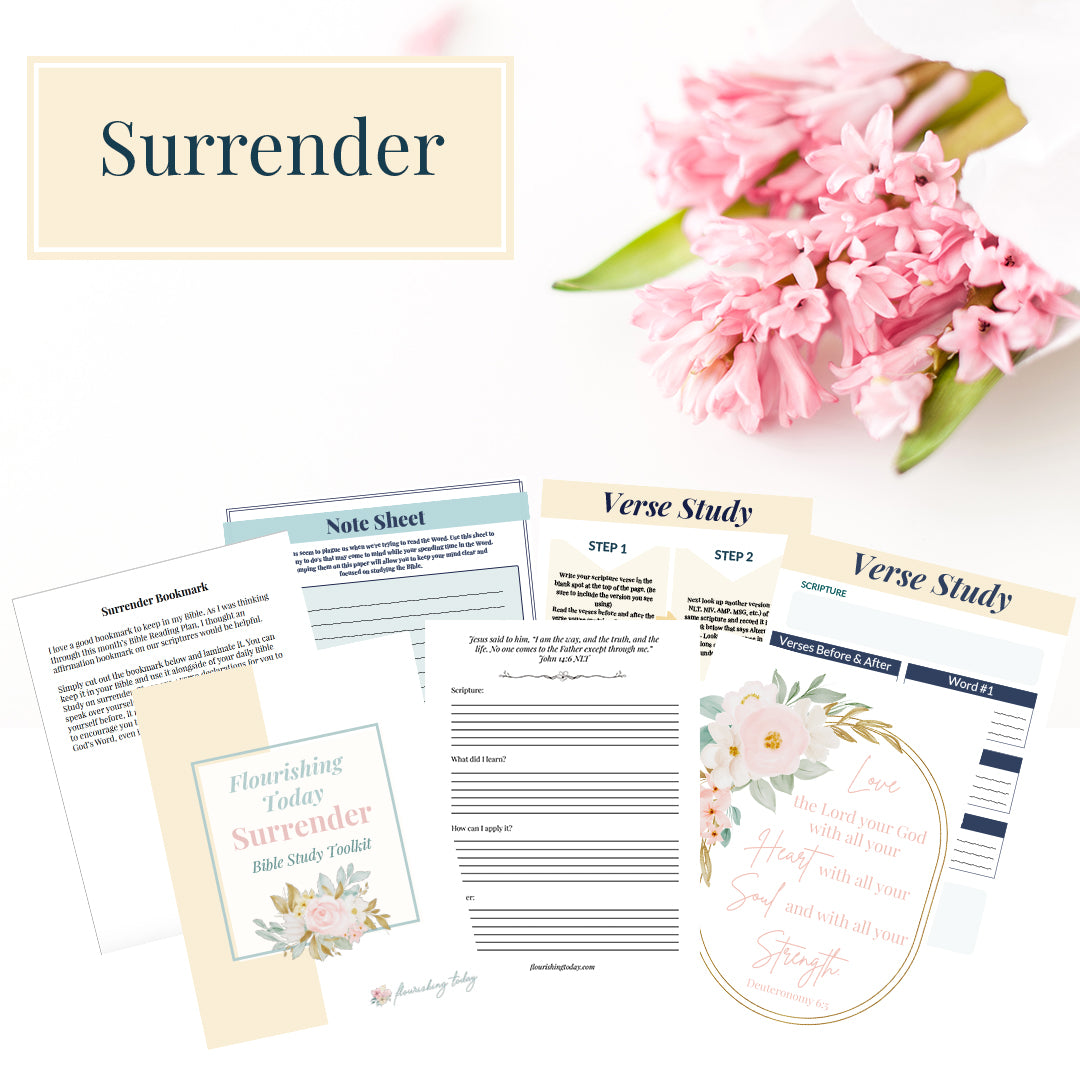 Surrender Bible Study Toolkit Physical Copy