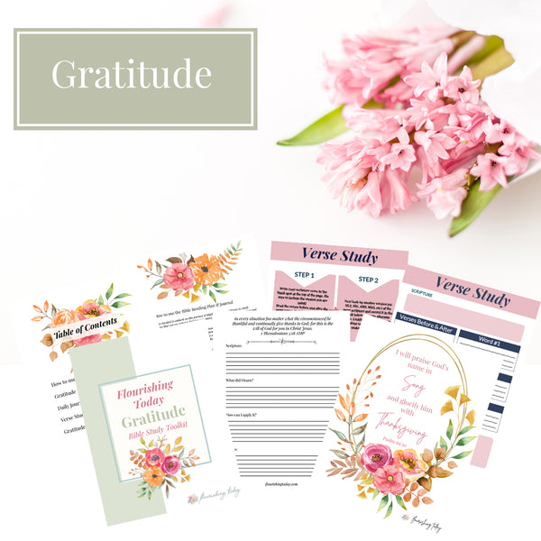 Gratitude Bible Study Journal (Physical Product)