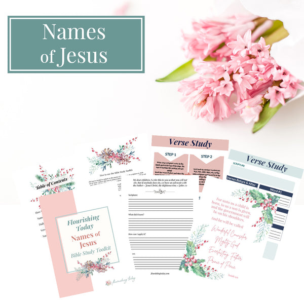 Names of Jesus Bible Study Journal