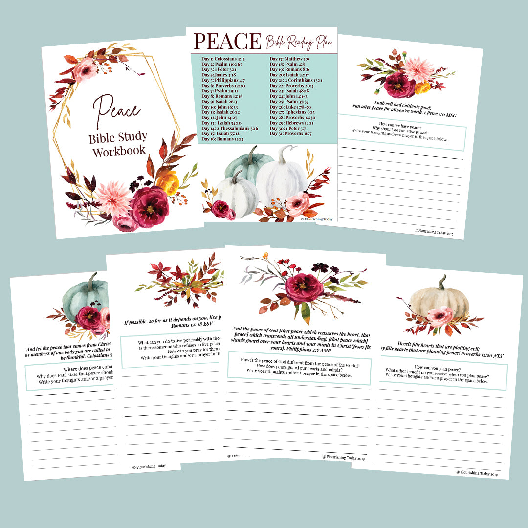 Peace Workbook