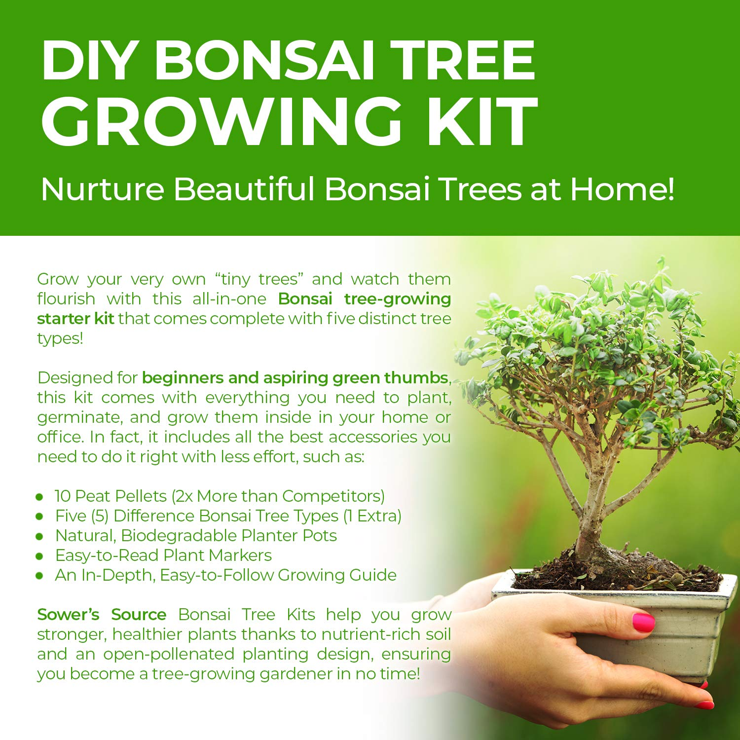 Bonsai Tree Starter Kit Sower S Source