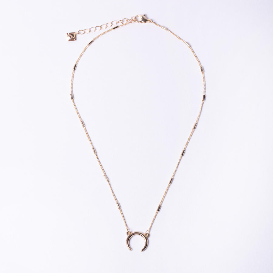 Horn Charm Necklace
