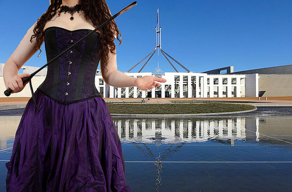 Putting the vulva to parliament