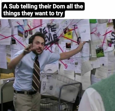 A sub telling their Dom all the things they want to try